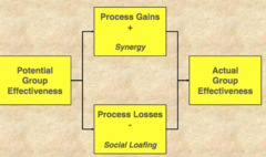 Effects of Group Processes