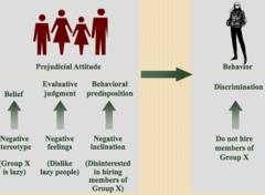 Prejudice vs. Discrimination