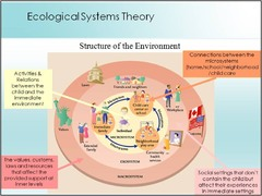 The Macrosystem