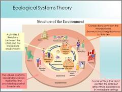 The Mesosystem